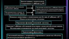 Этиология генитального кандидоза